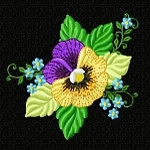 pansy PCS sampler